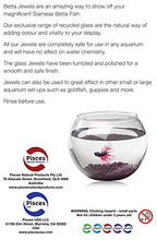 Load image into Gallery viewer, Pisces AM-BETTA105 17 oz Violet Betta Jewels, One Size