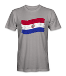 Paraguay country flag t-shirt