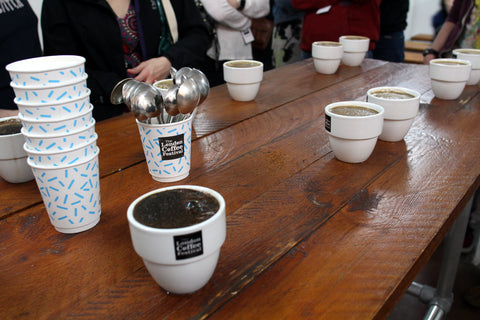 SCAA Coffee Cupping