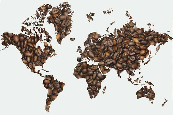 Expensive Coffee Around the World