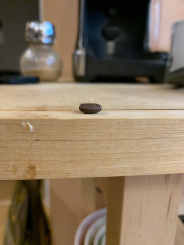 Flat Coffee bean
