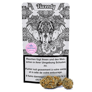 Viweedy Harlem Queen Indoor