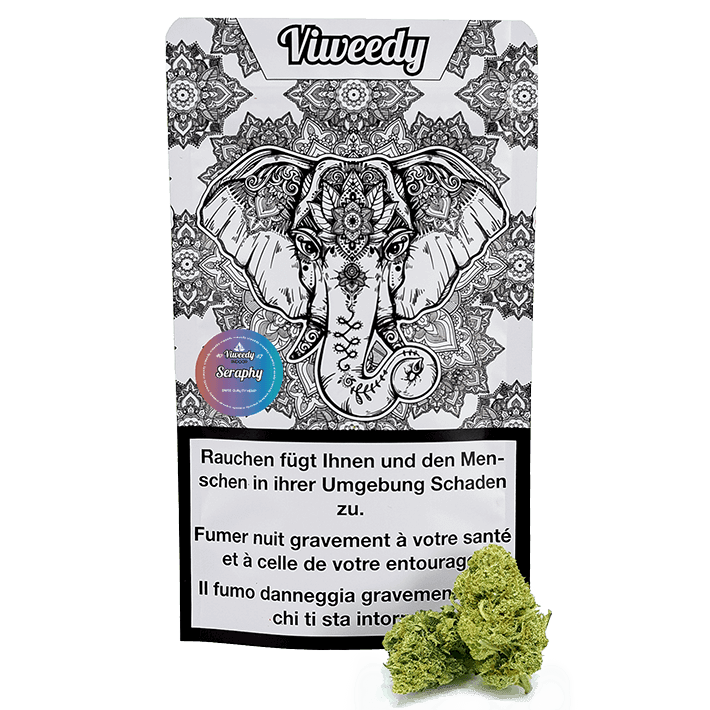Viweedy Seraphy Indoor