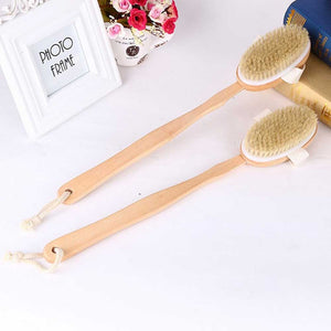 BRISTLE BACK BRUSH WITH LONG HANDLE