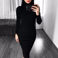 Toneway Clothing Warm Women Autumn Winter Sweater Knitted Dresses Slim Elastic Turtleneck Long Sleeve Sexy Lady Bodycon Robe Dresses - ToneWay Clothing