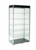Glass Wallcase