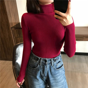 Autumn Winter Thick Sweater Women Knitted Ribbed Pullover Long Sleeve Turtleneck