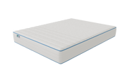Our Mattress (includes FREE standard shipping & Premium Mattress Protector)