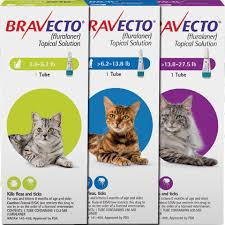 Bravecto for Cats - Twin Pack