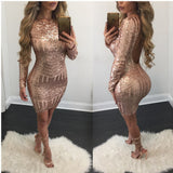 Sexy Sequins Backless Dress