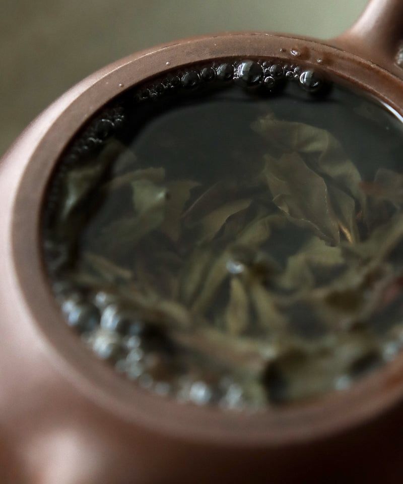 Pu'erh Raw Wuliangshan 2013