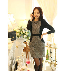 Combined 2 In One Korean Designer Business Dress with Jacket