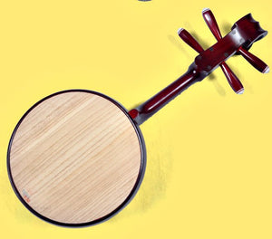 Chinese Ruan Musical Instrument