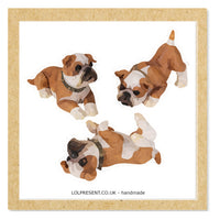 British Bull Dog greetings card