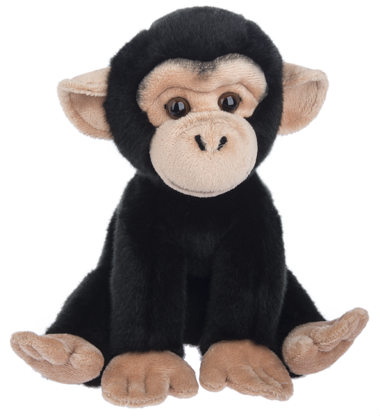 Plush Chimpanzee, 12