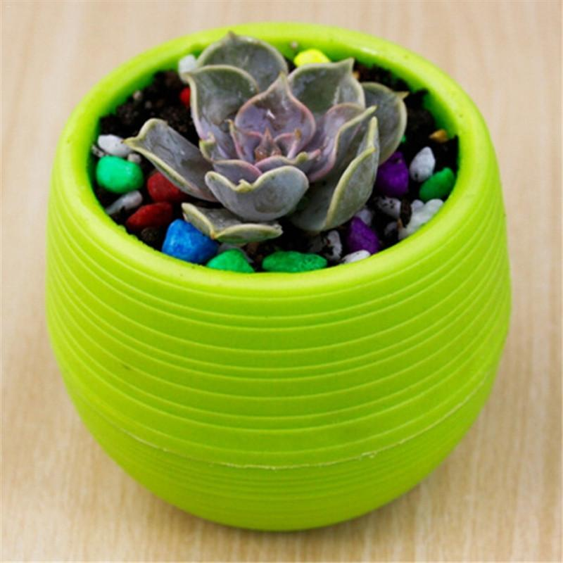 5Pcs Rainbow Plastic Stone Pill Flowerpot Home Office Garden Balcony Succulents Plants Desktop Pots Creative Small Pot