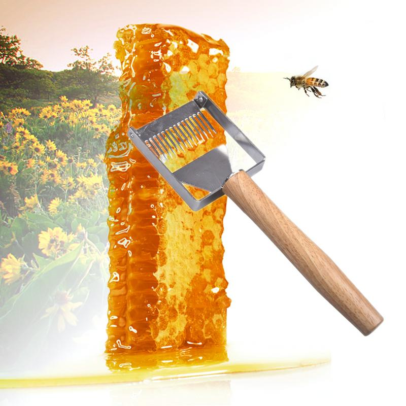 Innovative Apiculture Uncapping Fork Stainless Steel Honeycomb Honey Shovel Barb Cutting Beekeeping Tool