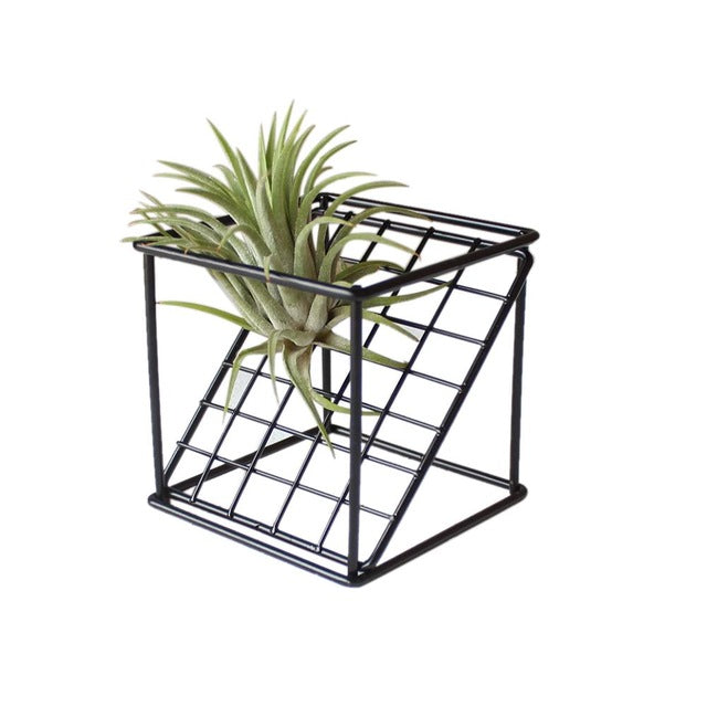 Rustic Delicate Iron Freestanding Hanging Rack Holder Double-layer Geometrical Square Grid Air Plant Receptacle Flower Stand