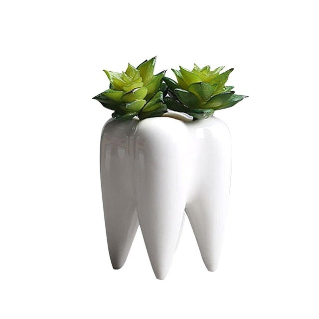 Tooth Shape Desktop Ceramic Succulent Plants Flower Pot Modern Design Mini Planter Pots Flower Vase Decor