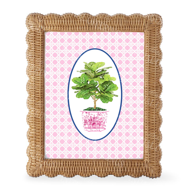 Fig Tree in Pink Planter Wicker Print Border Wall Art