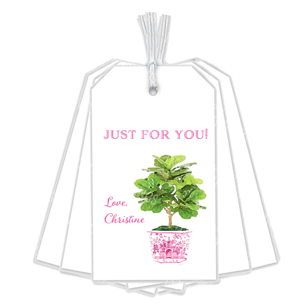 Fiddle Leaf Fig Plant in Pink Planter Gift Tags