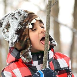 files/child-licks-twig-in-winter_134x134_crop_center_2x_668c9b29-dc4e-4aec-b75d-13105992bdfc.jpg