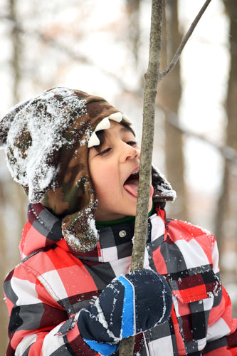 files/child-licks-twig-in-winter.jpg