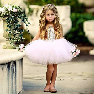 Girls Dress Princess Dress Tutu 2-6 Years Pink Children Dresses Pink Clothing MJJ Source As picture 14 3T