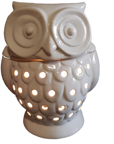 Hoot electric melt warmer