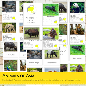 Animals of Asia Montessori  3 Part Cards and Fact Cards