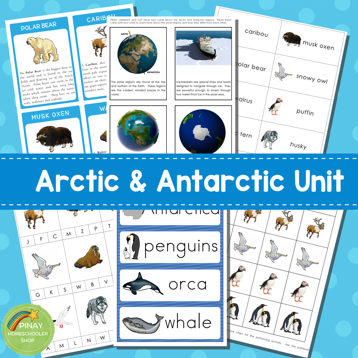 Arctic and Antarctic Preschool and Kindergarten Mini Unit Activities