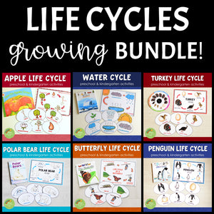 Growing BUNDLE of Life Cycle Activity Sets