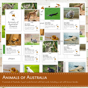 Animals of Australia Montessori 3 Part Cards and Fact Cards