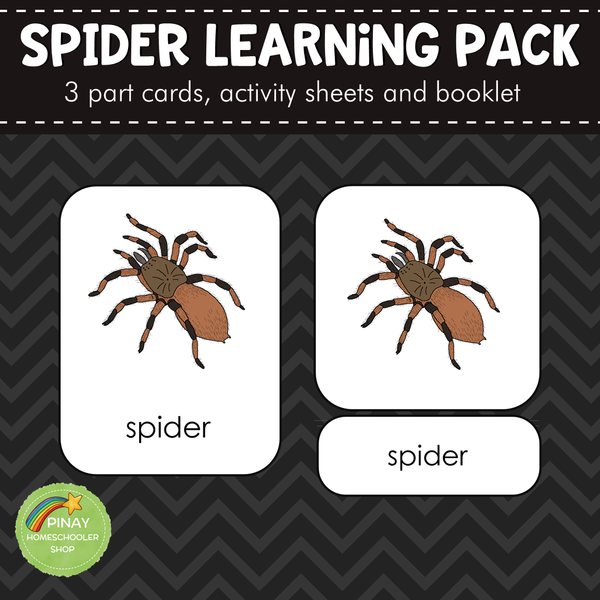 Montessori Parts of a Spider 3 Part Cards