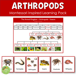 Arthropods - Insects - Crustaceans - Arachnids Montessori Learning Pack