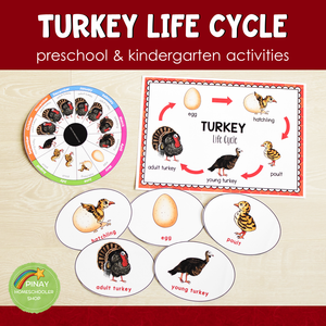 Turkey Life Cycle Activity Set