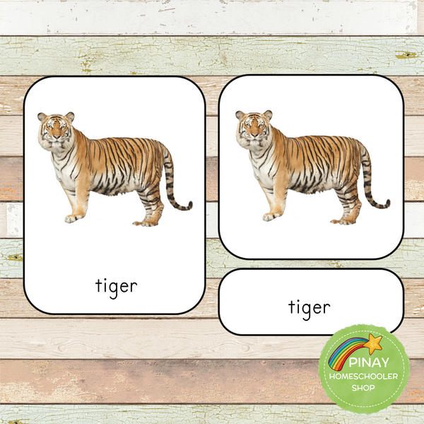 Montessori Wild Animals Toob 3 Part Cards
