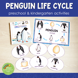 Penguin Life Cycle Activity Set: Preschool/ Kindergarten