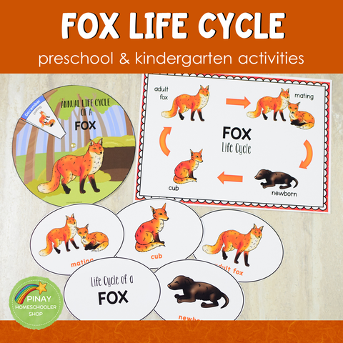 Fox Life Cycle Activity Set