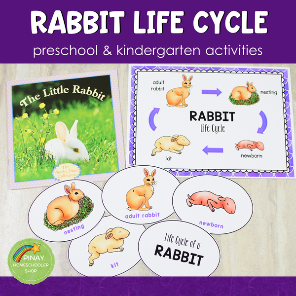 Rabbit Life Cycle Activity Set