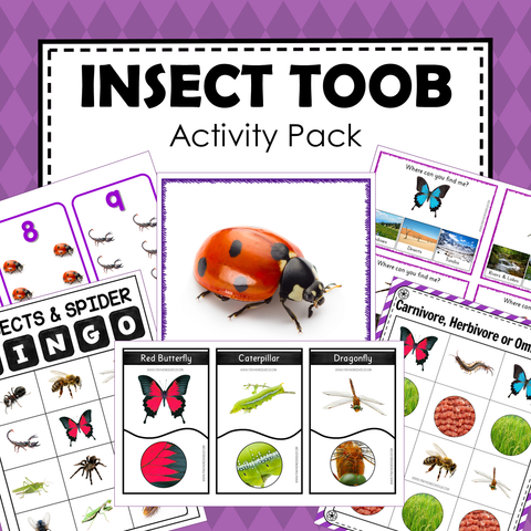 Safari Toob Insect Preschool Kindergarten Learning Pack