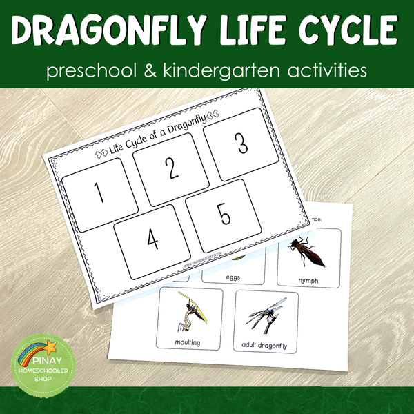 Dragonfly Life Cycle Set - Preschool & Kindergarten