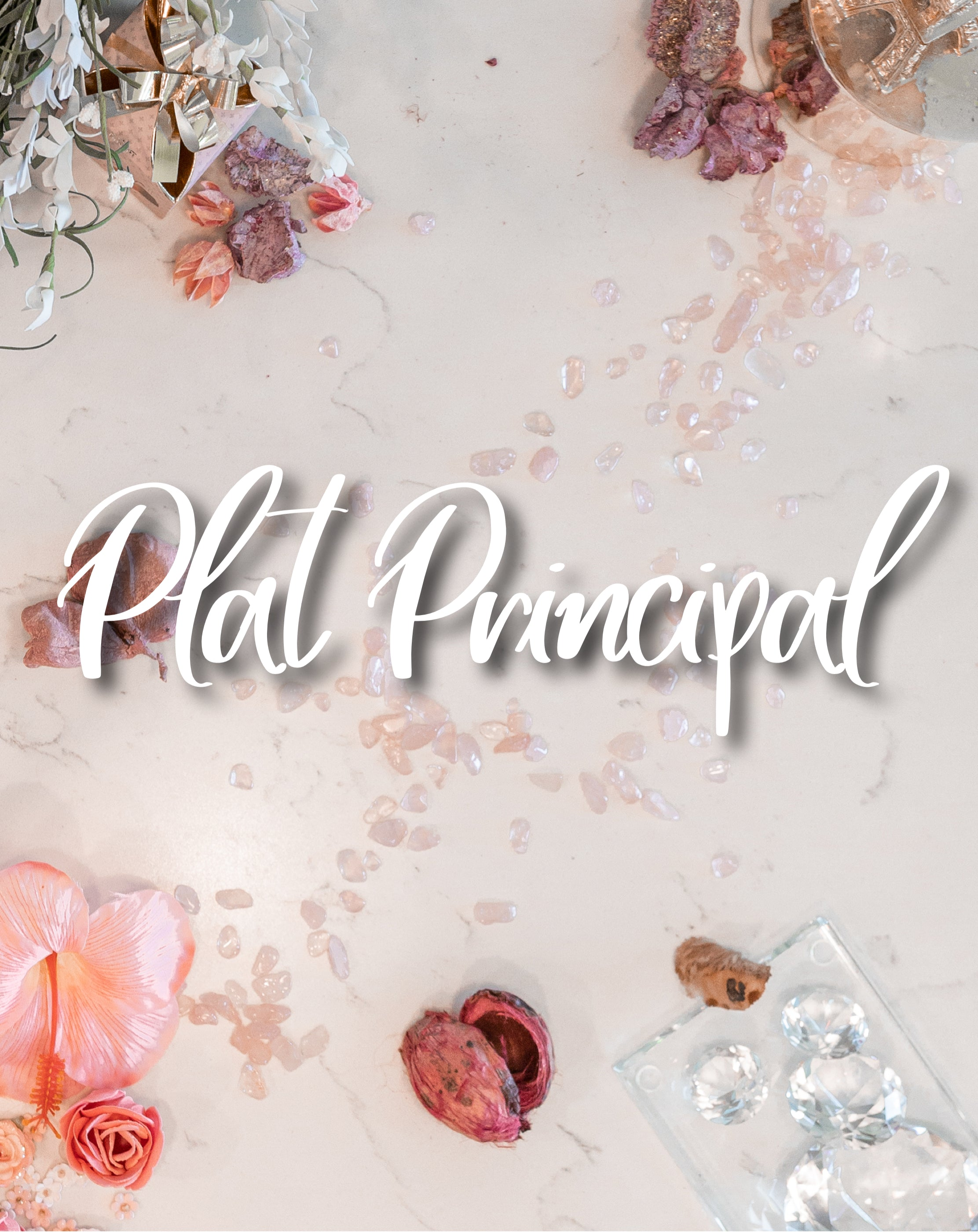 Plat Principal (Makeup Application)