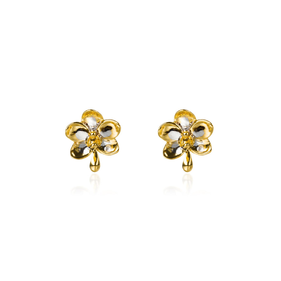 Ascocenda Pierced Earrings (RHG)