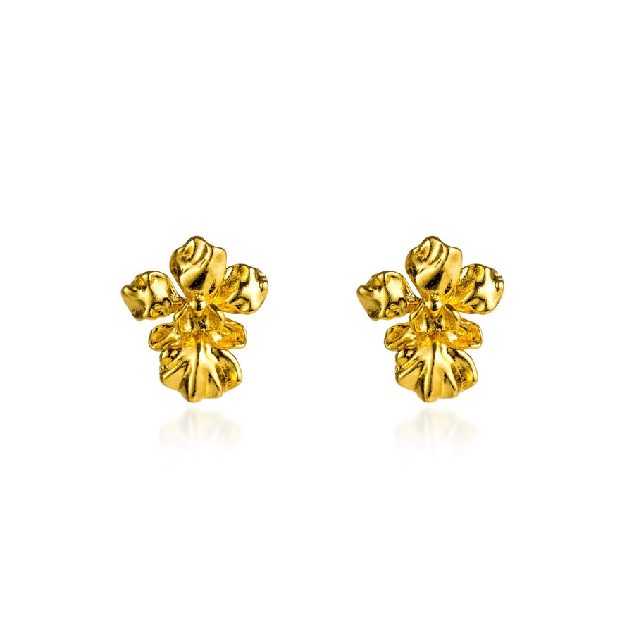 Vanda Miss Joaquim Orchid Pierced Earrings (G)