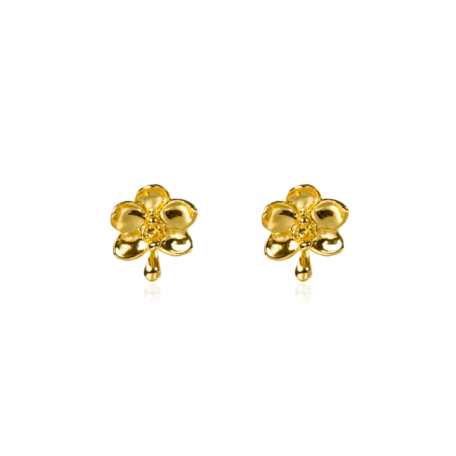 Ascocenda Pierced Earrings (G)