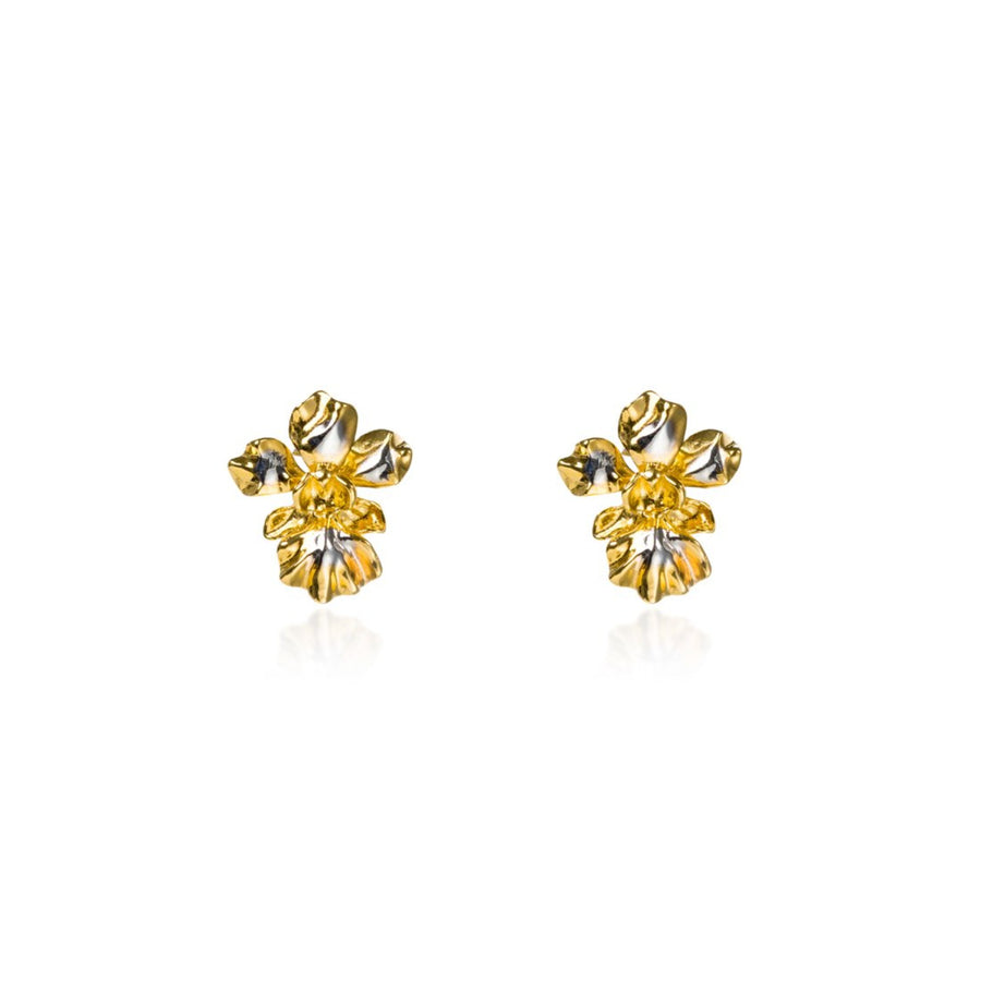 Vanda Miss Joaquim Orchid Pierced Earrings (RhG)