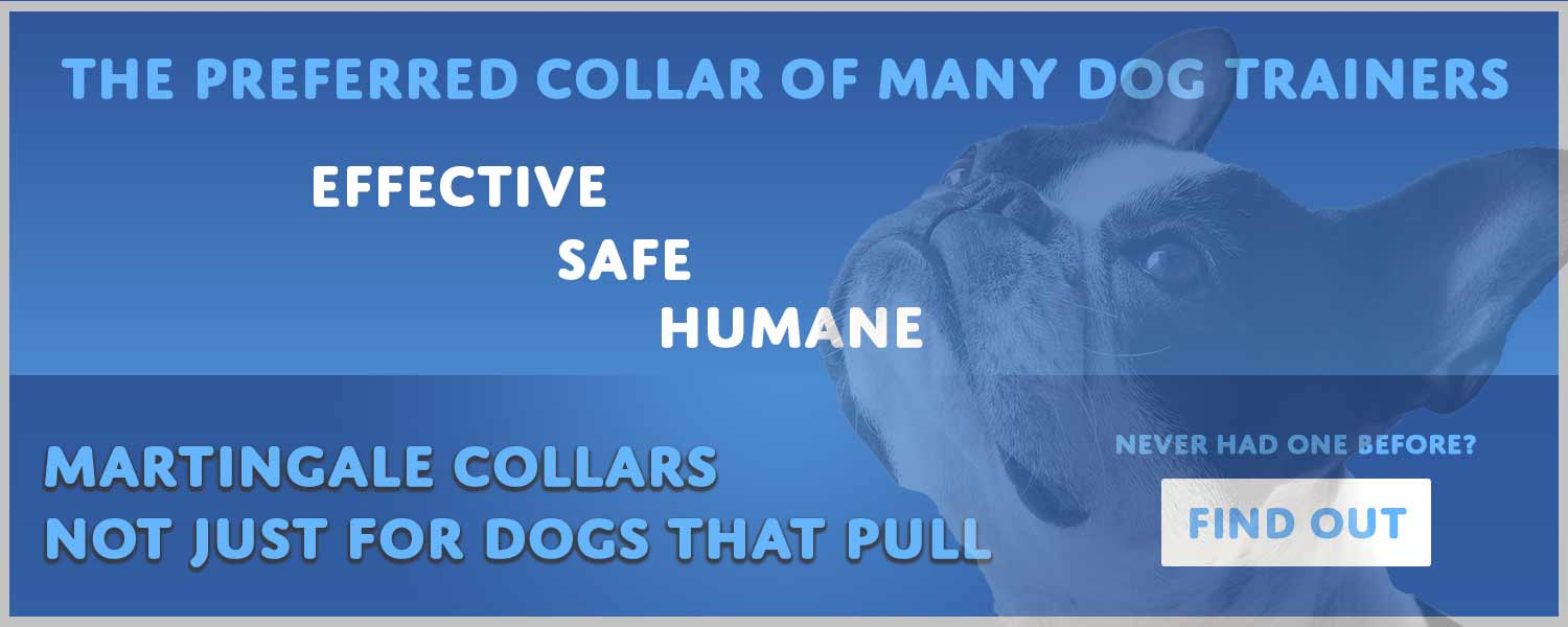 Martingale Collars - the preferred dog collar of many dog trainers