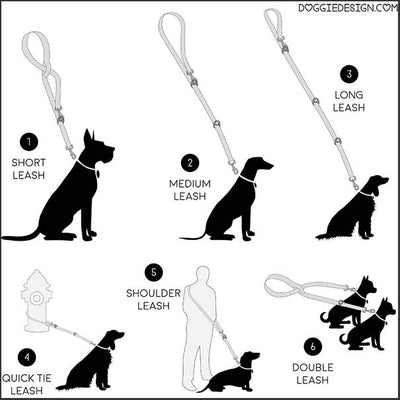 All-In-One Dog Leash - pooche supplies