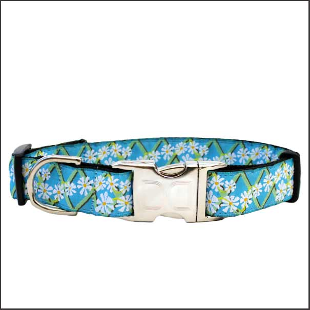 Daisy Dog Collar - pooche supplies